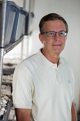 Daniel J. Royse, Ph.D.