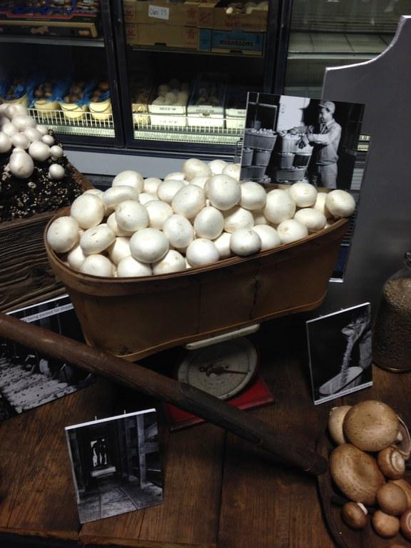 2016 PA Farm Show Mushroom Booth