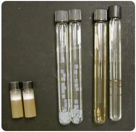 3 sets of pair of test tubes